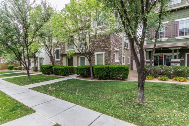 161 W Laurel Court, Gilbert, AZ 85233 (MLS #5752871) :: Brett Tanner Home Selling Team