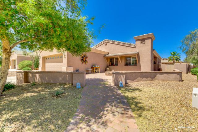 3952 W Lariat Court, Eloy, AZ 85131 (MLS #5752896) :: Yost Realty Group at RE/MAX Casa Grande