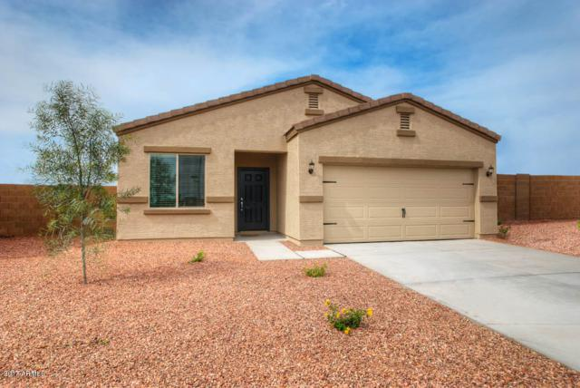 8128 W Wood Lane, Phoenix, AZ 85043 (MLS #5752949) :: Kortright Group - West USA Realty