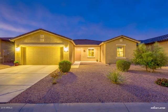 42104 W Solitare Drive, Maricopa, AZ 85138 (MLS #5753095) :: Santizo Realty Group