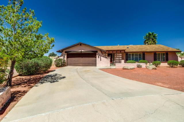 802 E Caribbean Lane, Phoenix, AZ 85022 (MLS #5753146) :: Occasio Realty