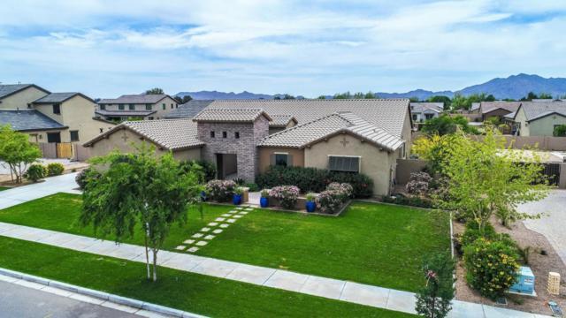 17727 E Appaloosa Drive, Queen Creek, AZ 85142 (MLS #5753165) :: Occasio Realty