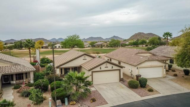 30556 N Sunray Drive, San Tan Valley, AZ 85143 (MLS #5753185) :: Kortright Group - West USA Realty