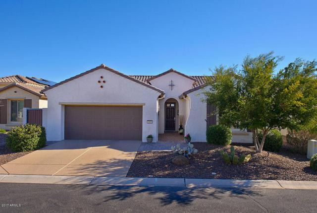 1831 N 167TH Drive, Goodyear, AZ 85395 (MLS #5753196) :: Occasio Realty