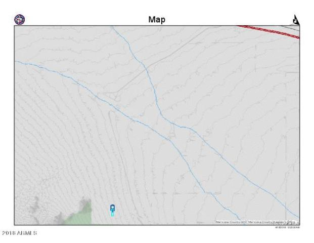 558XX W Roosevelt Avenue, Tonopah, AZ 85354 (MLS #5753218) :: The Garcia Group @ My Home Group