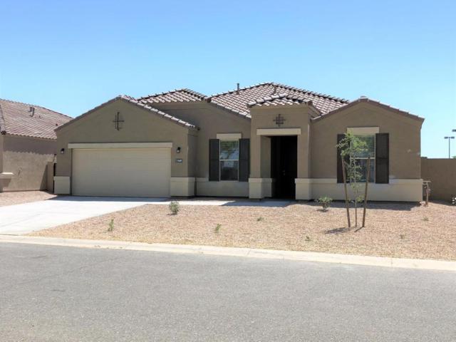 35689 N Loemann Drive, San Tan Valley, AZ 85143 (MLS #5753398) :: The Kenny Klaus Team