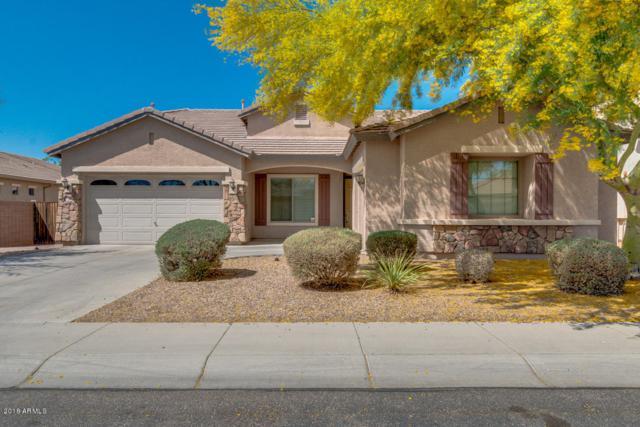 13764 W Cheery Lynn Road, Avondale, AZ 85392 (MLS #5753404) :: My Home Group