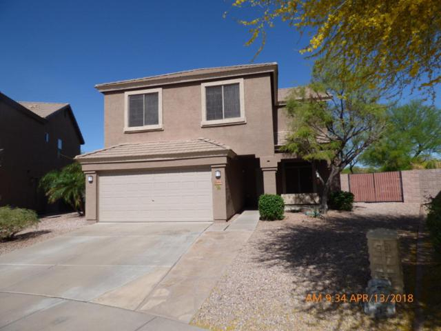 26444 N 42ND Place, Phoenix, AZ 85050 (MLS #5753415) :: Kelly Cook Real Estate Group