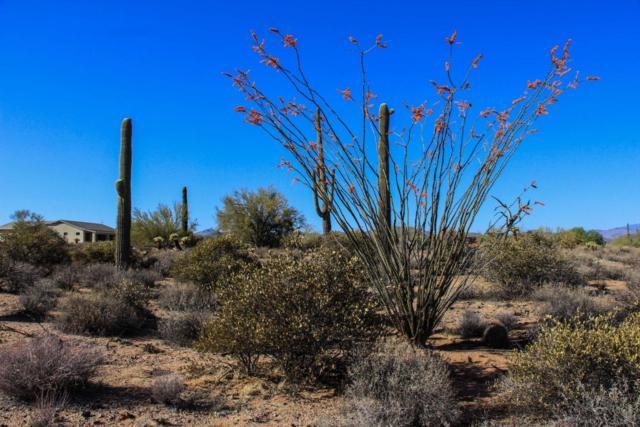 17437 aprx E Wildcat Drive, Rio Verde, AZ 85263 (MLS #5753474) :: RE/MAX Excalibur