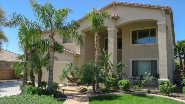 11334 N 152ND Lane, Surprise, AZ 85379 (MLS #5753501) :: Occasio Realty