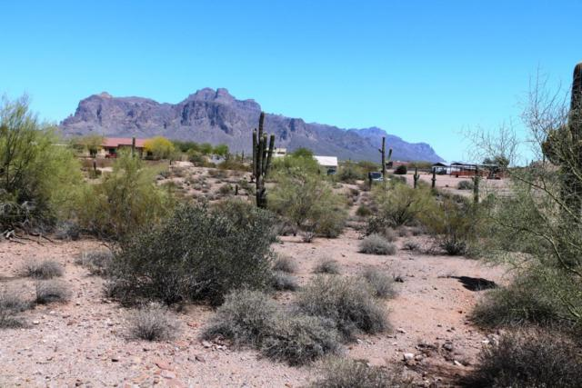 1800 N Hilton Road, Apache Junction, AZ 85119 (MLS #5753518) :: The Kenny Klaus Team