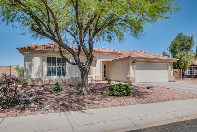 1676 E Daisy Court, Casa Grande, AZ 85122 (MLS #5753543) :: Yost Realty Group at RE/MAX Casa Grande