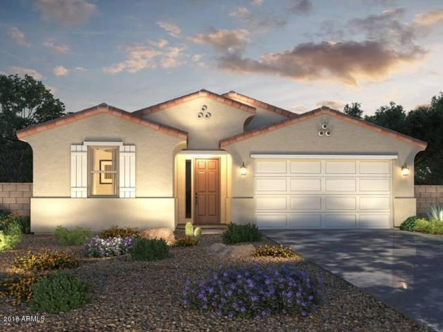40131 W Brandt Drive, Maricopa, AZ 85138 (MLS #5753578) :: Sibbach Team - Realty One Group