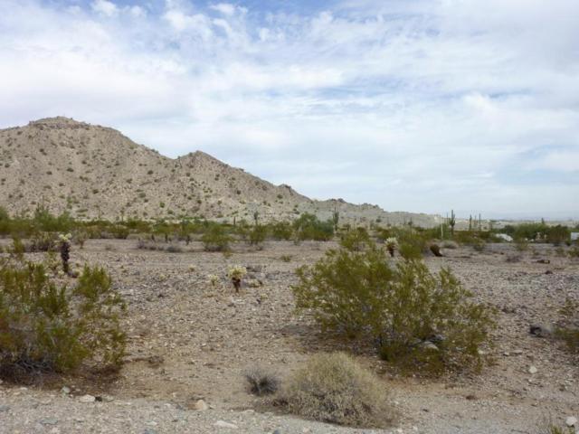 21366 W Sage Hill Road, Buckeye, AZ 85396 (MLS #5753589) :: The Sweet Group