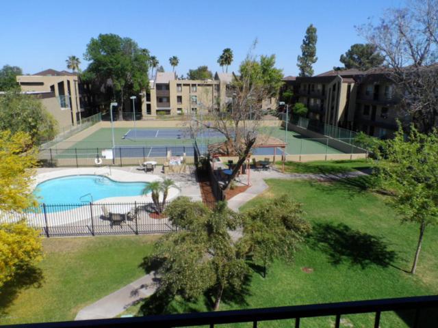 461 W Holmes Avenue #336, Mesa, AZ 85210 (MLS #5753625) :: Brett Tanner Home Selling Team