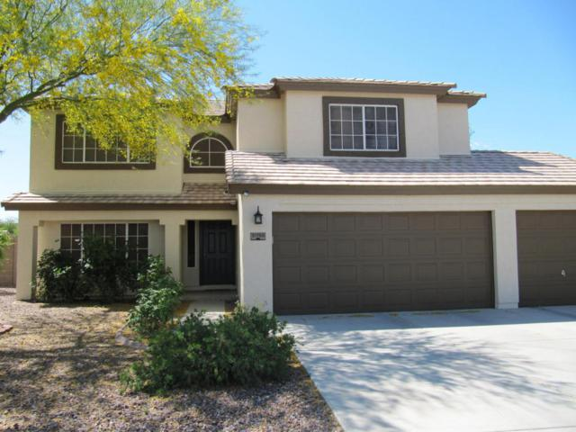 31708 N Bobcat Way, San Tan Valley, AZ 85143 (MLS #5753637) :: The Kenny Klaus Team
