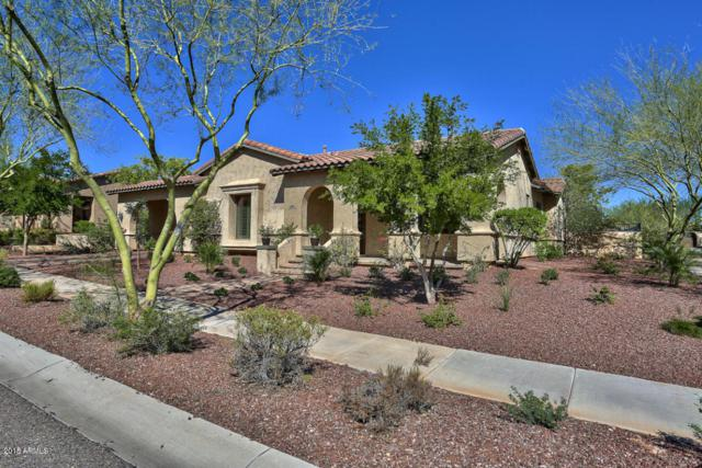 21342 W Cholla Trail, Buckeye, AZ 85396 (MLS #5753644) :: The Sweet Group