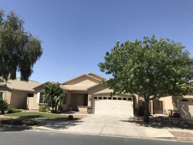21628 E Calle De Flores, Queen Creek, AZ 85142 (MLS #5753661) :: The Kenny Klaus Team