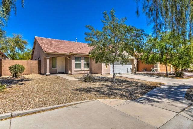 15164 W Adams Street, Goodyear, AZ 85338 (MLS #5753684) :: Occasio Realty