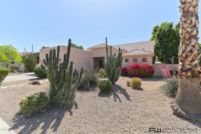 13179 W Coronado Road, Goodyear, AZ 85395 (MLS #5753709) :: REMAX Professionals