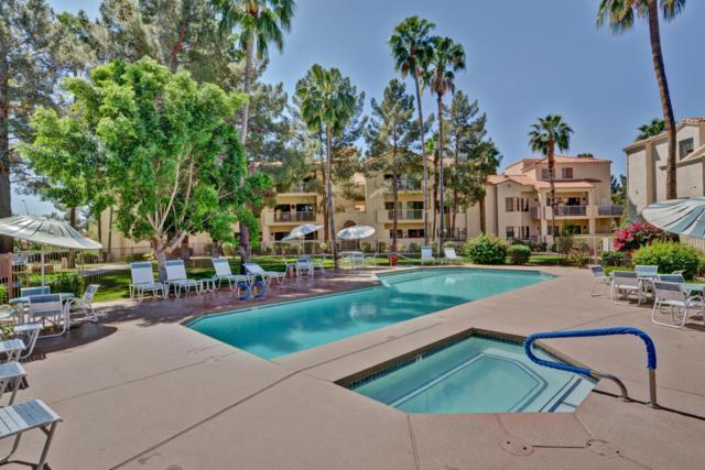 19400 N Westbrook Parkway #221, Peoria, AZ 85382 (MLS #5753744) :: Brett Tanner Home Selling Team