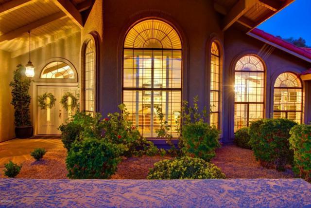 9635 N 106TH Way, Scottsdale, AZ 85258 (MLS #5753754) :: RE/MAX Excalibur