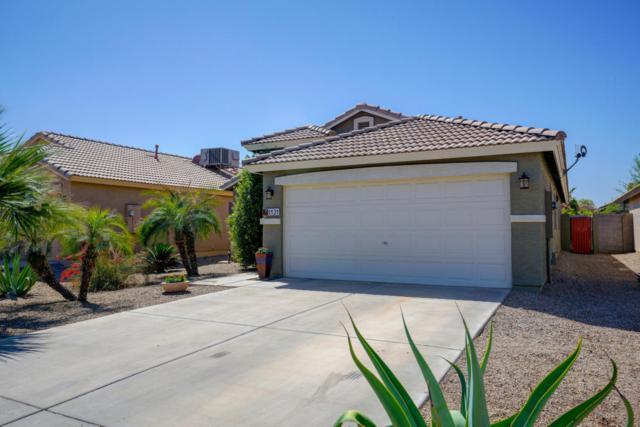 1131 E Santa Fiore Street, San Tan Valley, AZ 85140 (MLS #5753789) :: The Kenny Klaus Team
