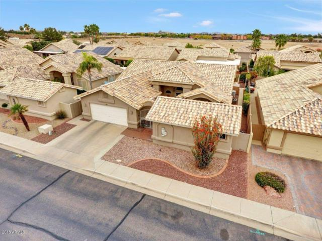 14208 W Morning Star Trail, Surprise, AZ 85374 (MLS #5753808) :: The Sweet Group