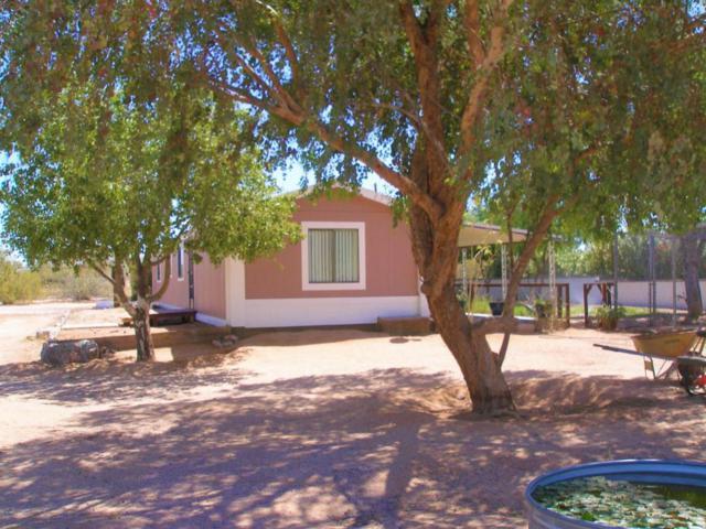 24215 E Logan Boulevard, Florence, AZ 85132 (MLS #5753873) :: My Home Group
