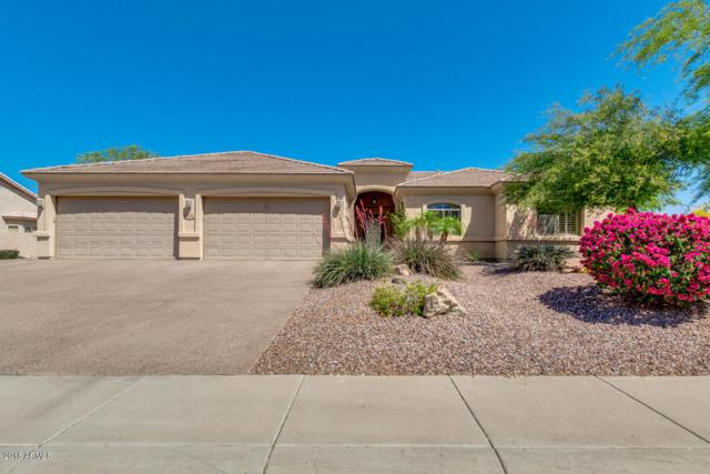 6108 W Alameda Road, Glendale, AZ 85310 (MLS #5753906) :: Ashley & Associates