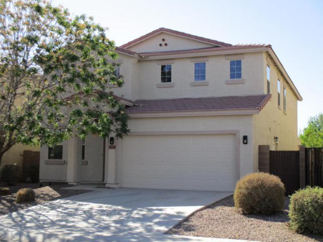 19154 N Ventana Lane, Maricopa, AZ 85138 (MLS #5753970) :: Revelation Real Estate