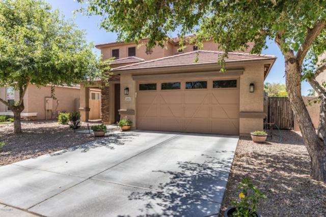 6466 S Claiborne Avenue, Gilbert, AZ 85298 (MLS #5753977) :: The Jesse Herfel Real Estate Group