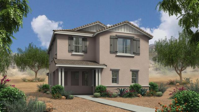 3839 E Stiles Lane, Gilbert, AZ 85295 (MLS #5753983) :: REMAX Professionals