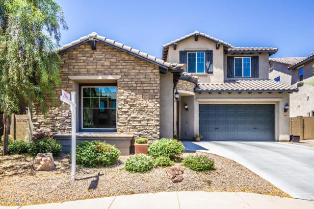 3814 E Cat Balue Drive, Phoenix, AZ 85050 (MLS #5753997) :: Kelly Cook Real Estate Group