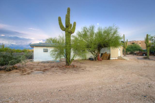 5441 E Yolantha Street, Cave Creek, AZ 85331 (MLS #5754011) :: RE/MAX Excalibur