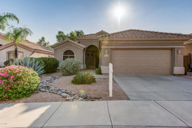 17828 N 80TH Place, Scottsdale, AZ 85255 (MLS #5754023) :: The Wehner Group