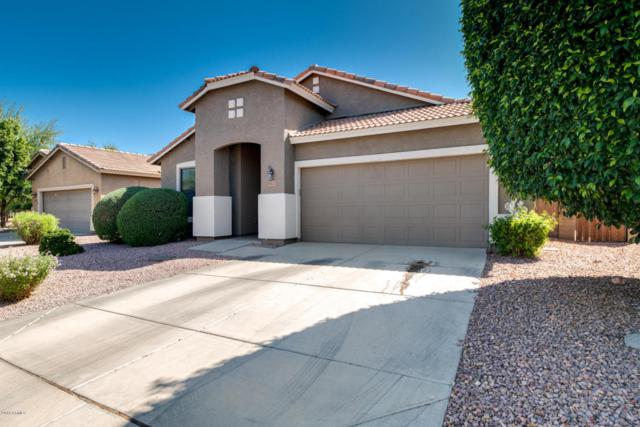 15127 N 159TH Drive, Surprise, AZ 85379 (MLS #5754025) :: My Home Group