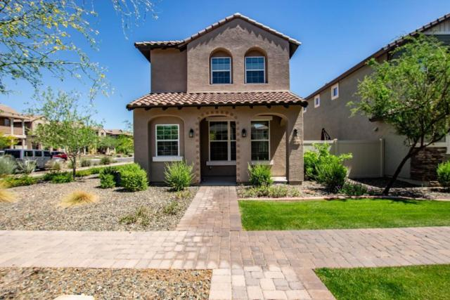 29082 N 124TH Lane, Peoria, AZ 85383 (MLS #5754027) :: The Worth Group