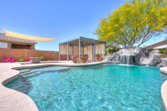 42550 W Rosalia Drive, Maricopa, AZ 85138 (MLS #5754035) :: Revelation Real Estate