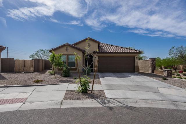17149 W Magnolia Street, Goodyear, AZ 85338 (MLS #5754049) :: My Home Group