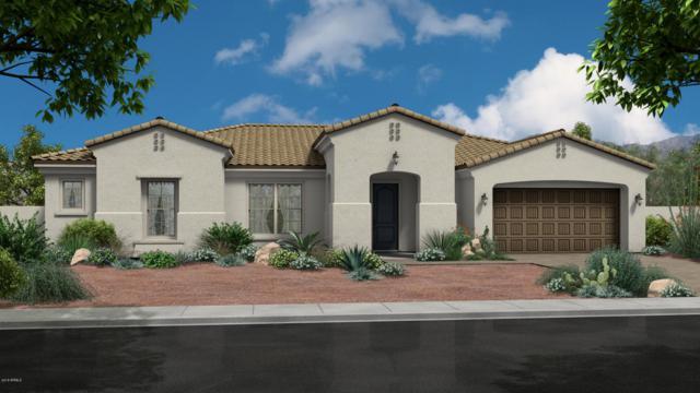 5437 S Chatsworth, Mesa, AZ 85212 (MLS #5754060) :: REMAX Professionals