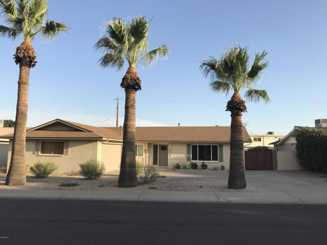 8431 E Orange Blossom Lane, Scottsdale, AZ 85250 (MLS #5754083) :: Sibbach Team - Realty One Group