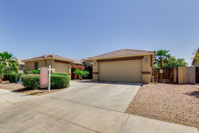 12079 N 140TH Lane N, Surprise, AZ 85379 (MLS #5754103) :: My Home Group