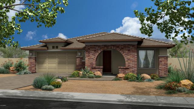 5710 S Winchester, Mesa, AZ 85212 (MLS #5754110) :: REMAX Professionals