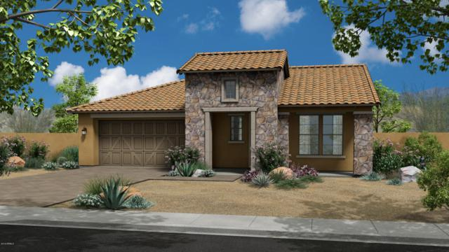5726 S Winchester, Mesa, AZ 85212 (MLS #5754133) :: REMAX Professionals