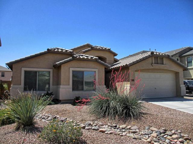 40849 W Novak Lane, Maricopa, AZ 85138 (MLS #5754136) :: Revelation Real Estate