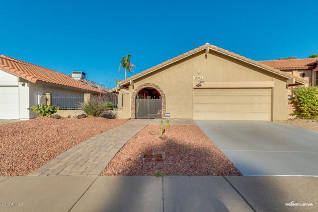 2211 S El Marino, Mesa, AZ 85202 (MLS #5754148) :: REMAX Professionals