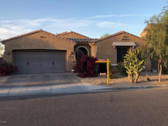 14324 W Coronado Road, Goodyear, AZ 85395 (MLS #5754153) :: Essential Properties, Inc.