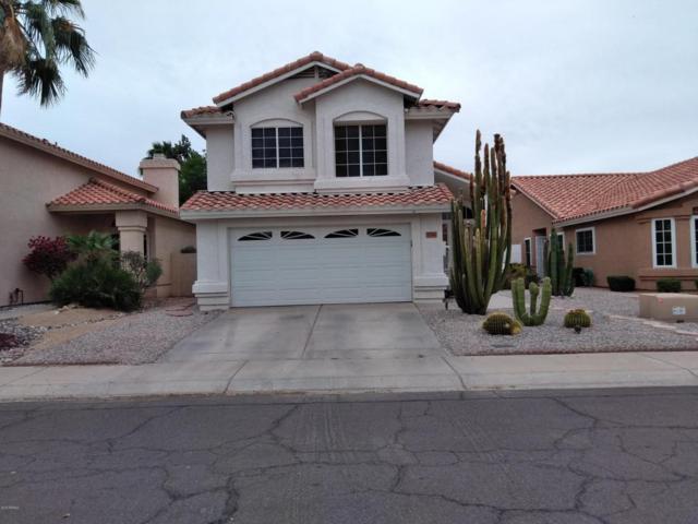 7711 W Oraibi Drive, Glendale, AZ 85308 (MLS #5754211) :: REMAX Professionals