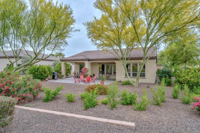 13038 W Mine Trail W, Peoria, AZ 85383 (MLS #5754221) :: Ashley & Associates